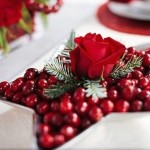 Ideas for decorating cranberries