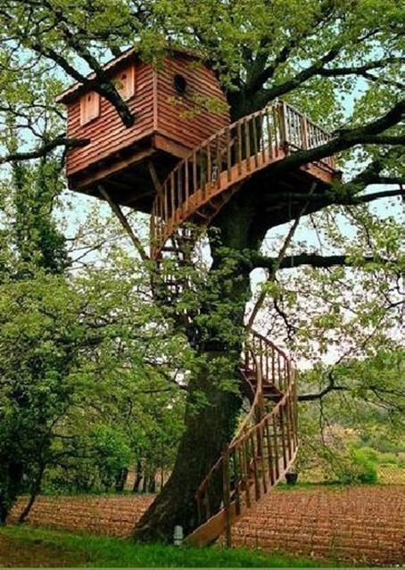 basic tree house pictures. More From Diy-is-fun.com Basic Tree House Pictures A