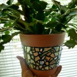 How to DIY mosaic for flower pot